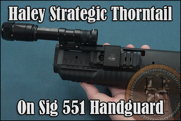 Haley Strategic Thorntail on a Sig SG 551.
